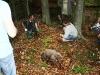 truffle_hunting10